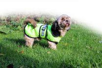 QHP Reflectie Deken Hond