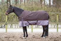 Harrys Horse Deken Thor 300gr 2Tone Seal Brown