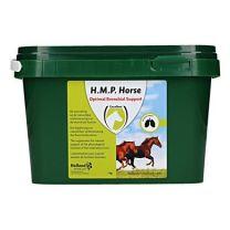 Excellent HMP Horse